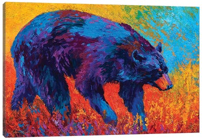 Walkabout Canvas Art Print