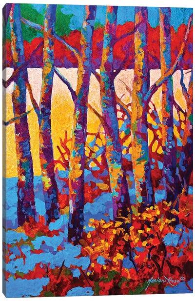 Winter's Promise Canvas Art Print