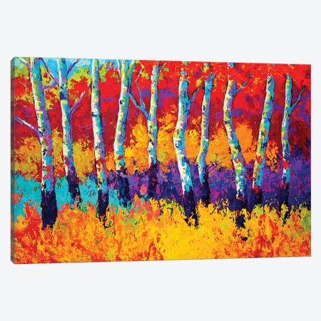 Autumn Riches Canvas Print #MRS9} by Marion Rose Canvas Art