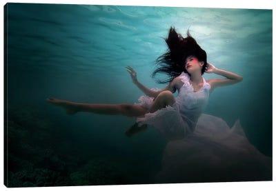 Beneath The Sea Canvas Art Print