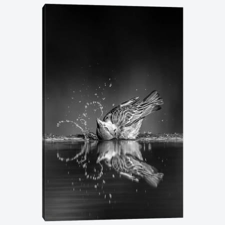 Swoosh 3-Piece Canvas #MRX4} by Jaco Marx Canvas Art