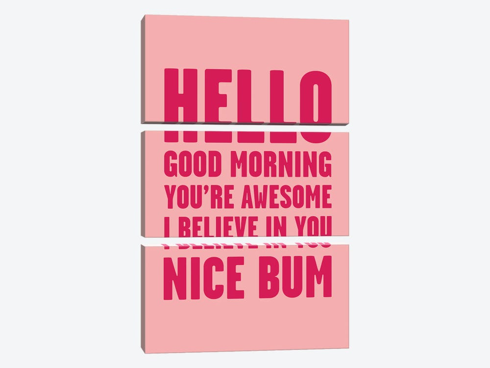 Hello You're Awesome Nice Bum Pink by Mambo Art Studio 3-piece Canvas Print
