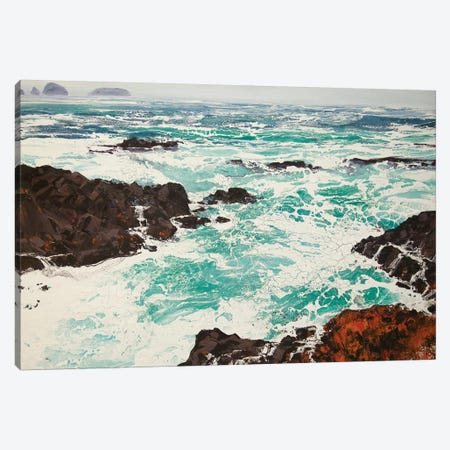 Iona XI Canvas Print #MSE11} by Michael Sole Canvas Art Print