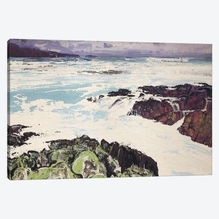 Iona XIII Canvas Print #MSE12} by Michael Sole Art Print