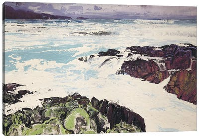 Iona XIII Canvas Art Print