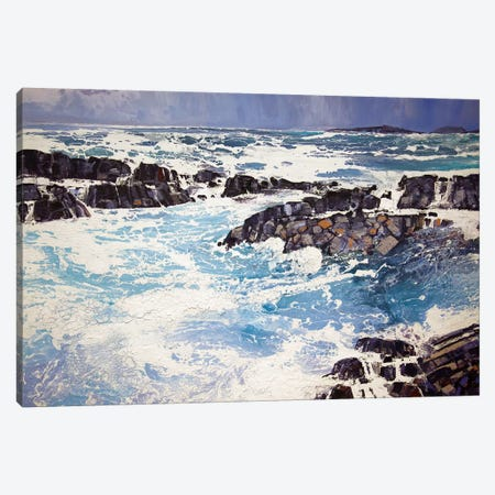 Iona XV Canvas Print #MSE14} by Michael Sole Canvas Wall Art