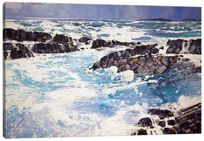 Iona XV Canvas Art Print