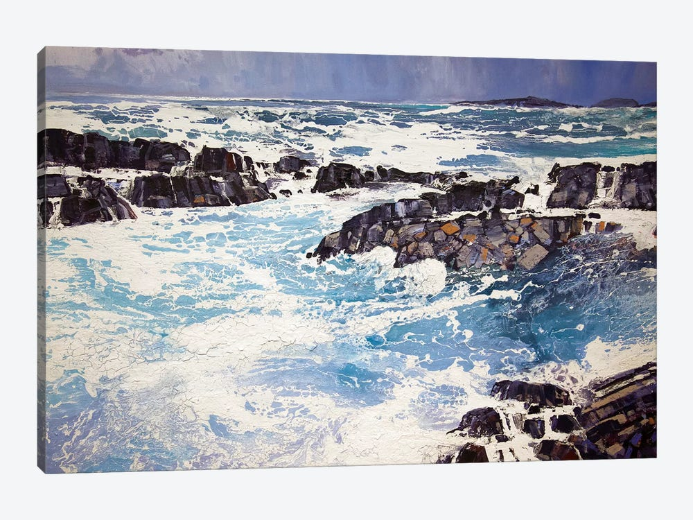 Iona XV by Michael Sole 1-piece Canvas Wall Art