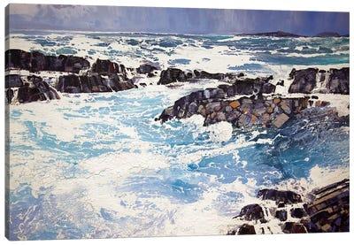 Iona XV Canvas Art Print