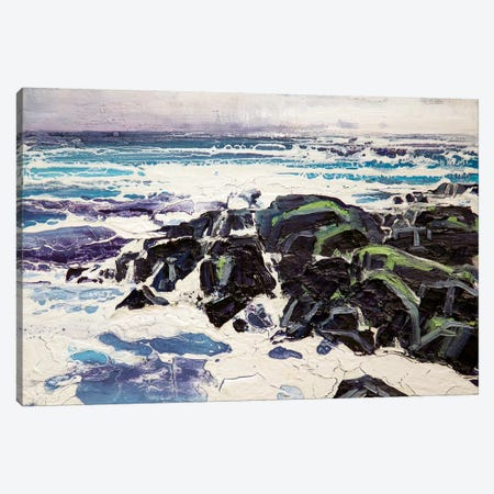 Iona Rocks I Canvas Print #MSE15} by Michael Sole Canvas Wall Art