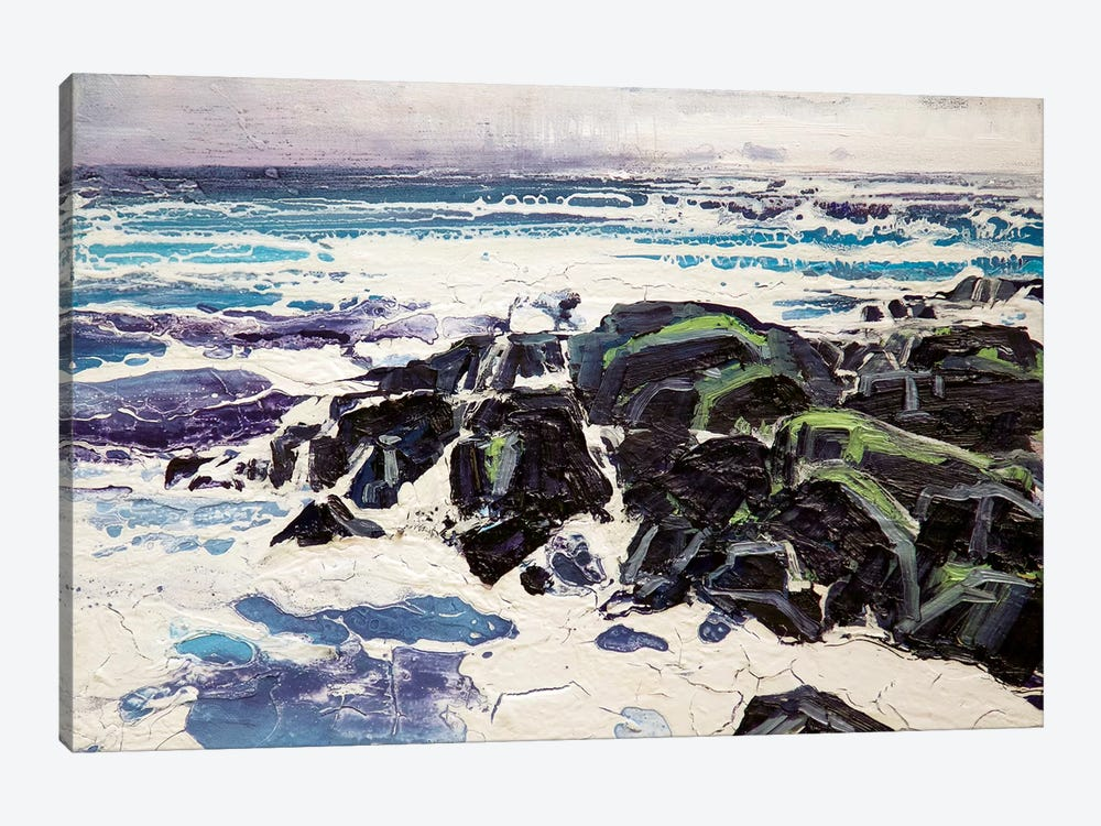 Iona Rocks I by Michael Sole 1-piece Canvas Art Print
