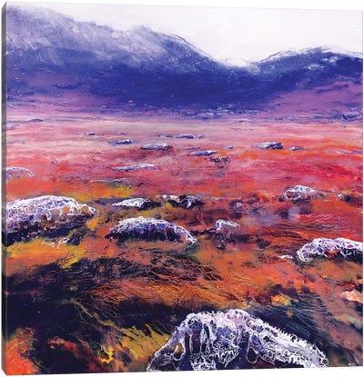 Lon Ban VI Canvas Art Print