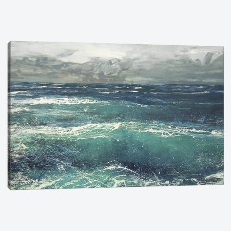 March Gale V Canvas Print #MSE23} by Michael Sole Canvas Art