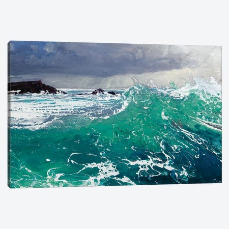 North Westerly II Canvas Print #MSE27} by Michael Sole Canvas Art Print