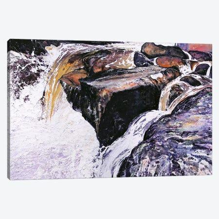 Òr Albannach Canvas Print #MSE28} by Michael Sole Canvas Art