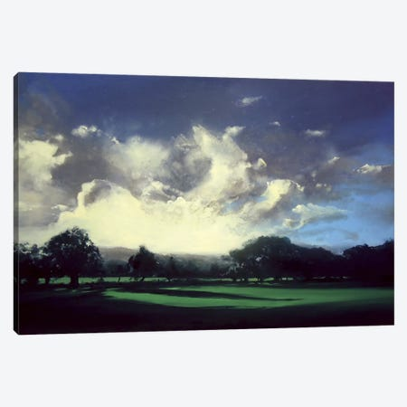 Pointing Home Canvas Print #MSE31} by Michael Sole Canvas Print