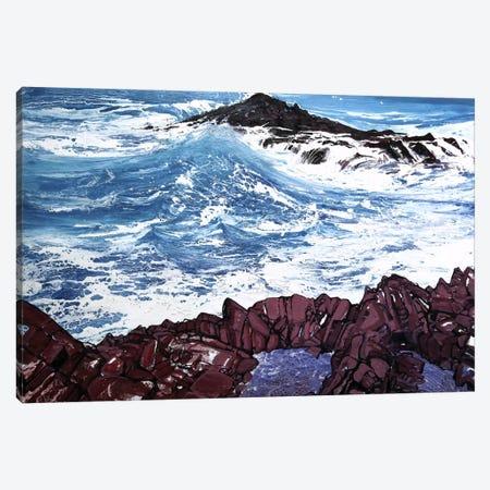 Seaspray, Red Rocks V Canvas Print #MSE37} by Michael Sole Canvas Wall Art