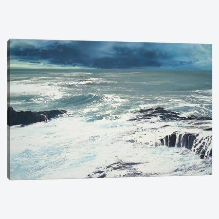 Seaspray, Rocks IV Canvas Print #MSE39} by Michael Sole Canvas Art Print