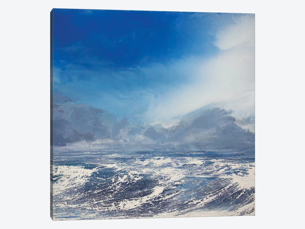 Fresh Easterly by Michael Sole 1-piece Canvas Print