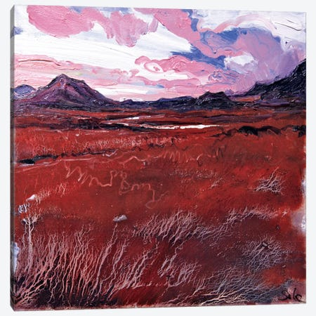 Sligachan VII Canvas Print #MSE44} by Michael Sole Art Print