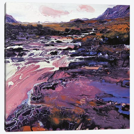 Sligachan VIII Canvas Print #MSE45} by Michael Sole Canvas Art Print
