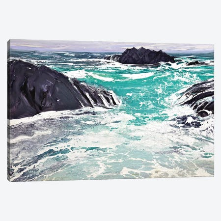 Iona I Canvas Print #MSE4} by Michael Sole Canvas Print