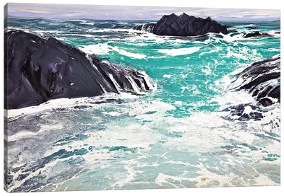 Iona I Canvas Art Print