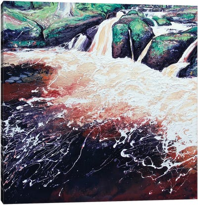 Wyming Brook V Canvas Print #MSE52