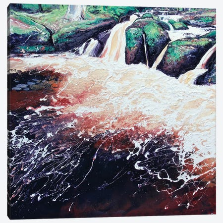 Wyming Brook V Canvas Print #MSE52} by Michael Sole Canvas Print