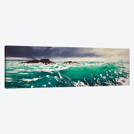 North Westerly IV Canvas Print #MSE53} by Michael Sole Art Print