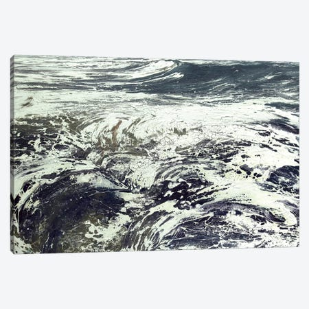 Black Ven I Canvas Print #MSE56} by Michael Sole Canvas Artwork