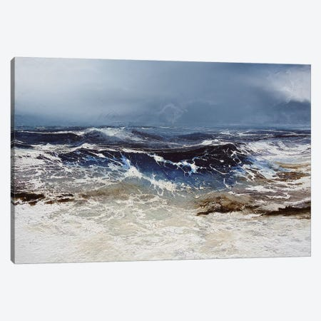 Egmont Point Canvas Print #MSE59} by Michael Sole Canvas Print