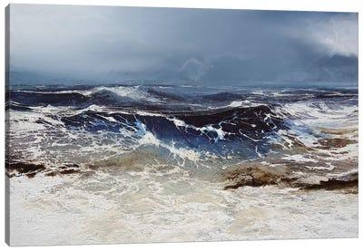 Egmont Point Canvas Art Print
