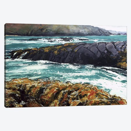 Iona IV Canvas Print #MSE6} by Michael Sole Canvas Print