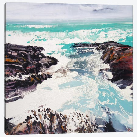 Cornwall Rocks II Canvas Print #MSE73} by Michael Sole Art Print