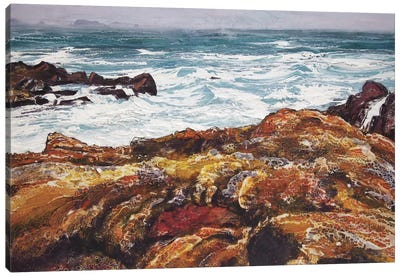 Iona V Canvas Art Print