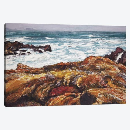 Iona V Canvas Print #MSE8} by Michael Sole Canvas Artwork