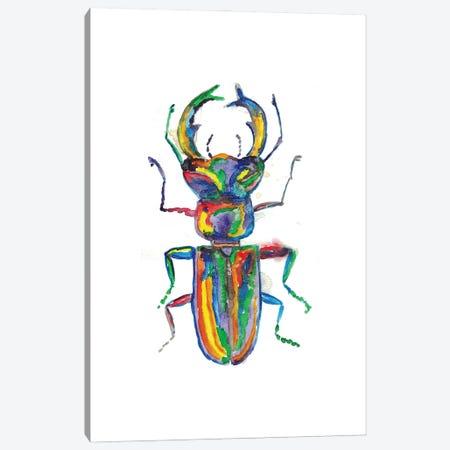 Stag Horn Beetle Canvas Print #MSG111} by Maryna Salagub Canvas Artwork