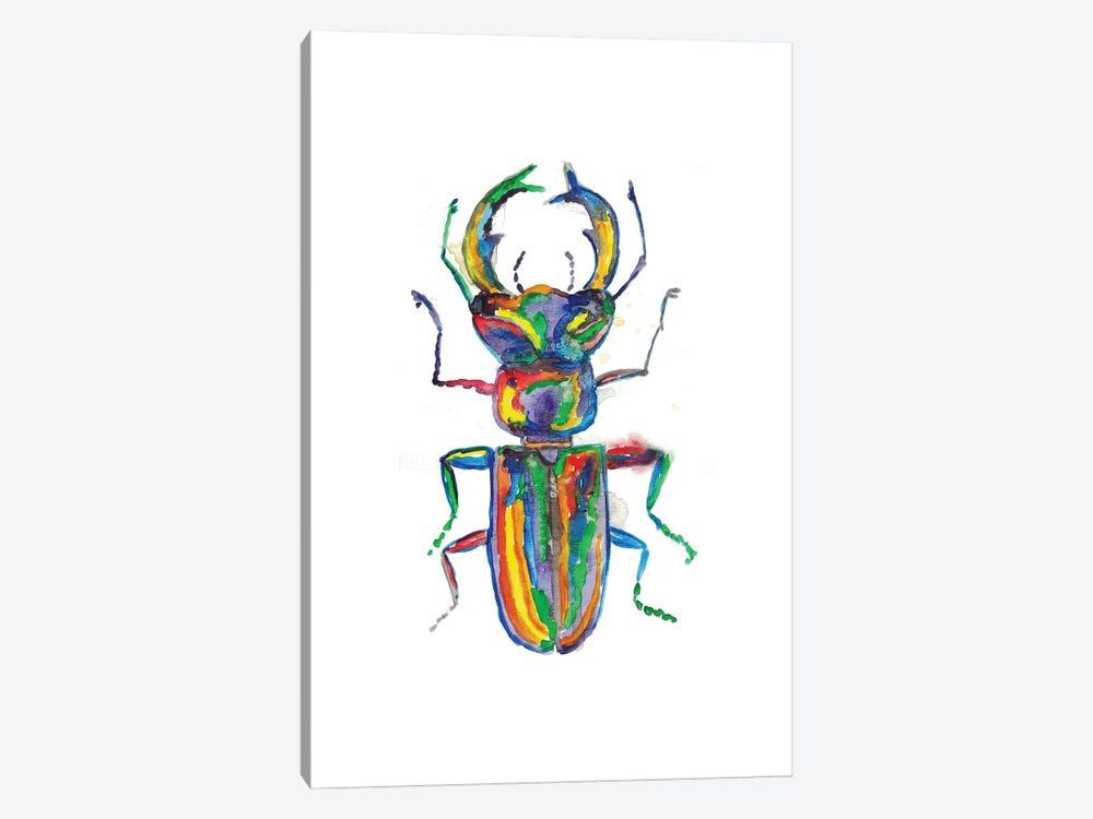 Stag Horn Beetle by Maryna Salagub 1-piece Canvas Art Print