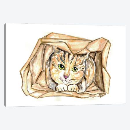 Cat In Bag Canvas Print #MSG28} by Maryna Salagub Canvas Wall Art