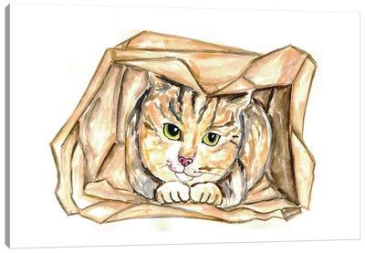 Cat In Bag Canvas Art Print