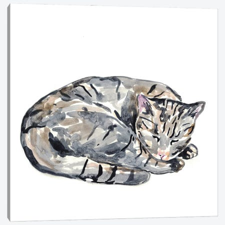 Cat Sleeping Canvas Print #MSG40} by Maryna Salagub Canvas Artwork