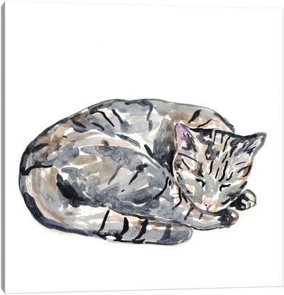 Cat Sleeping Canvas Art Print