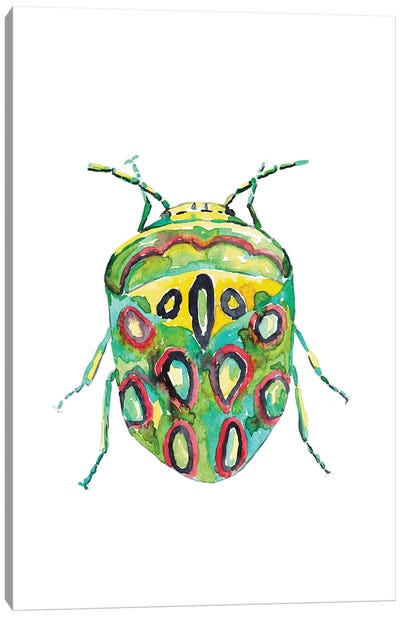 Colorful Beetle Canvas Art Print