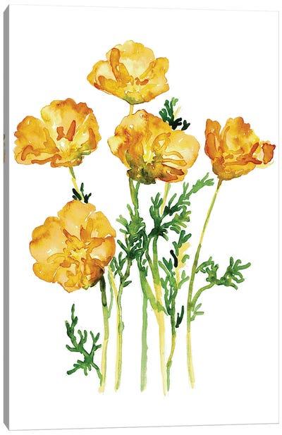 California Poppy Canvas Art Print