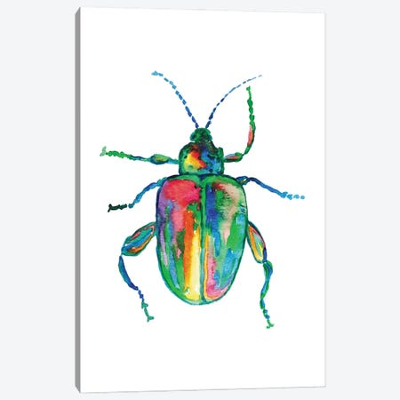 Colorful Beetle Art Canvas Print #MSG70} by Maryna Salagub Canvas Art Print