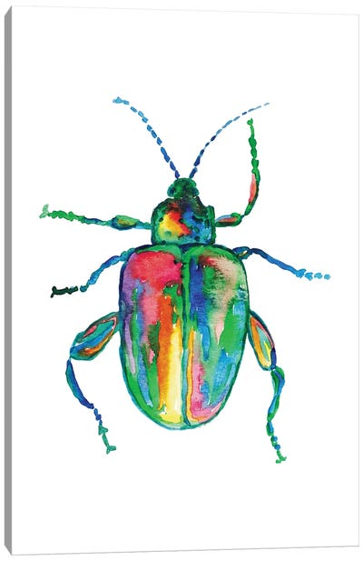 Colorful Beetle Art Canvas Art Print