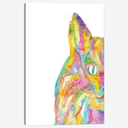 Cat Rainbow Canvas Print #MSG96} by Maryna Salagub Canvas Art