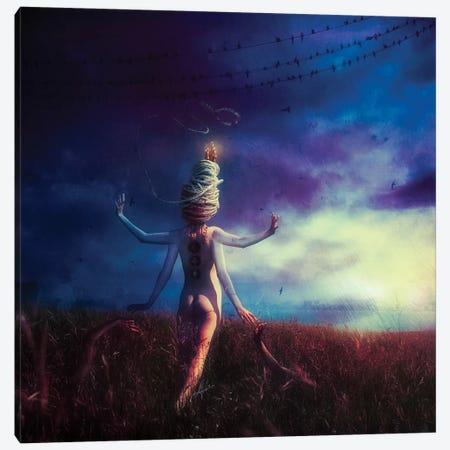 Scarecrow Canvas Print #MSN100} by Mario Sanchez Nevado Art Print