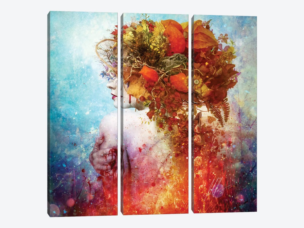 Compassion by Mario Sanchez Nevado 3-piece Canvas Art Print